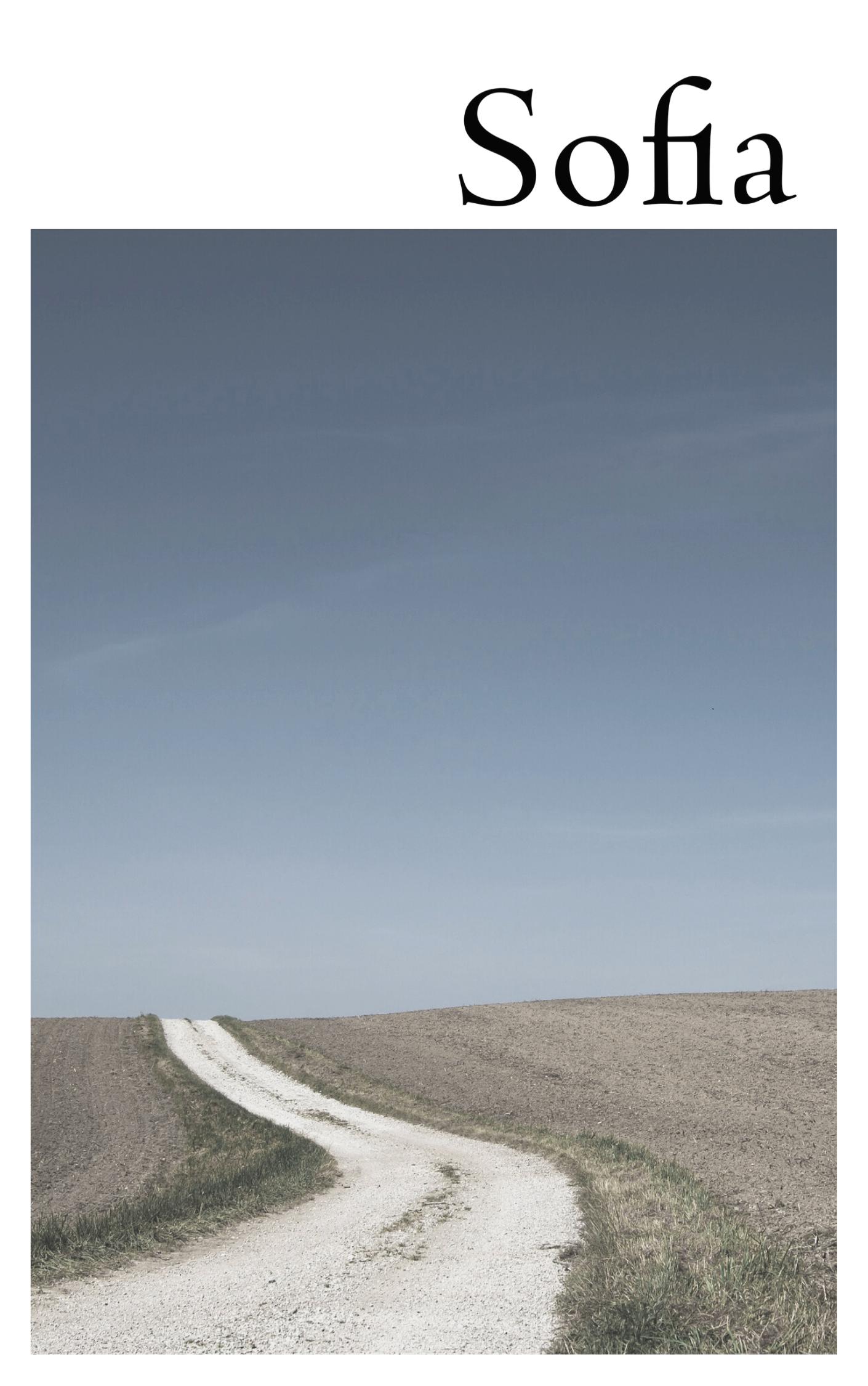 Visualizar v. 9 n. 1 (2020): Dossiê Filosofia Clássica Alemã