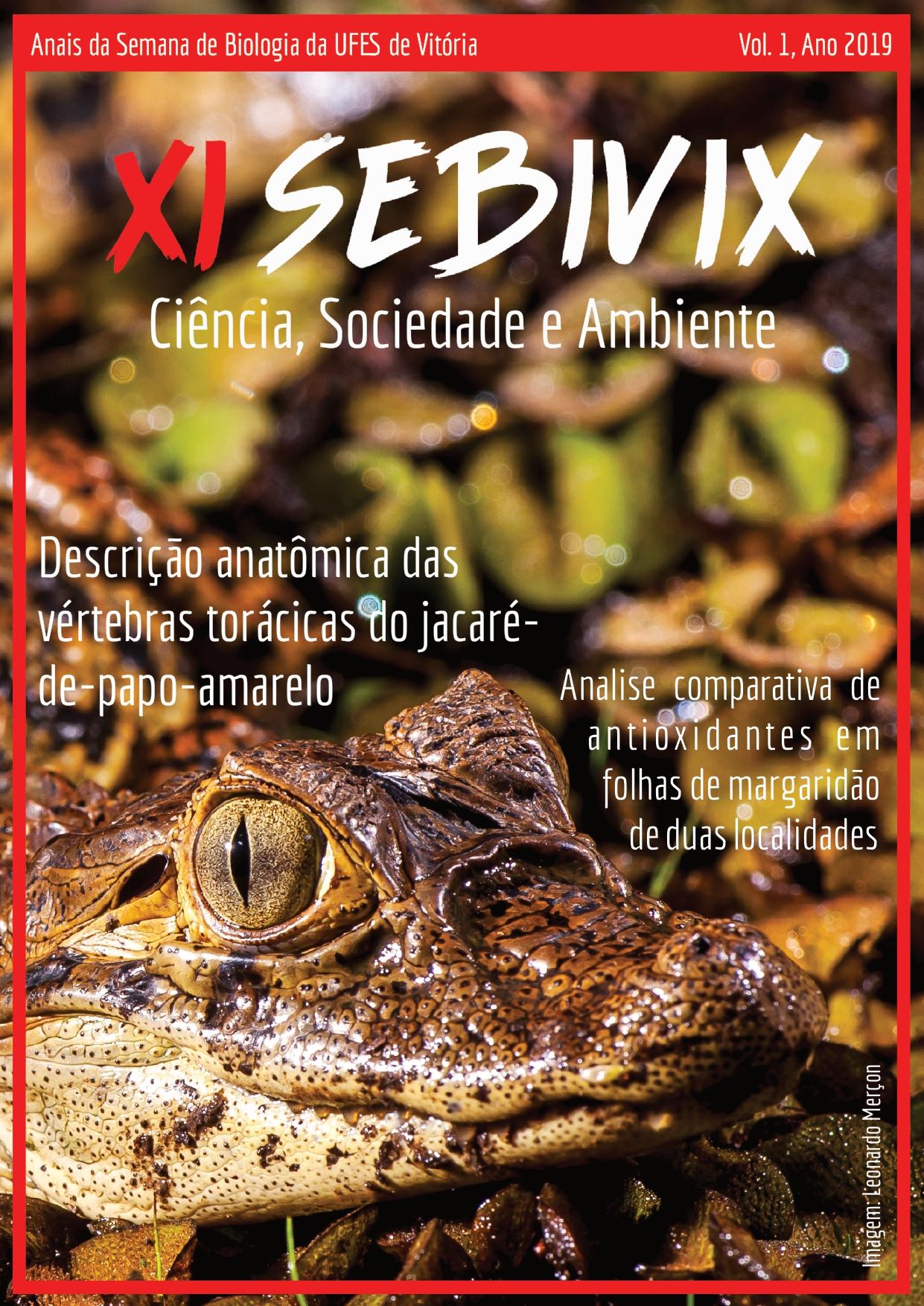 Anais da SeBiVix vol. 1 (2019); Imagem: Leonardo Merçon (Instituto Últimos Refúgios)
